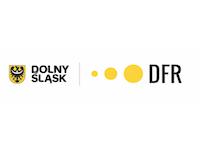 DS_DFR
